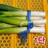 깐대파1단(1kg이상)/깐대파/파채/간편대파/양파/깐마늘/산지직송/국내산