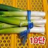 깐대파10단(1kg이상)/깐대파/파채/간편대파/양파/깐마늘/산지직송/국내산