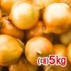 양파(대)5kg/햇양파/마늘/당근/양파즙/샐러드/다이어트/최상품국내산